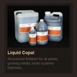 Liquid Copal